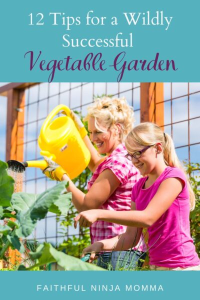 Successful Vegetable Garden