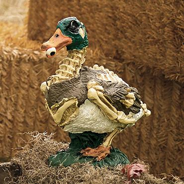 Disfigured Duck | Faith, Hope, Love, and Luck Survive Despite a Whiskered Accomplice
