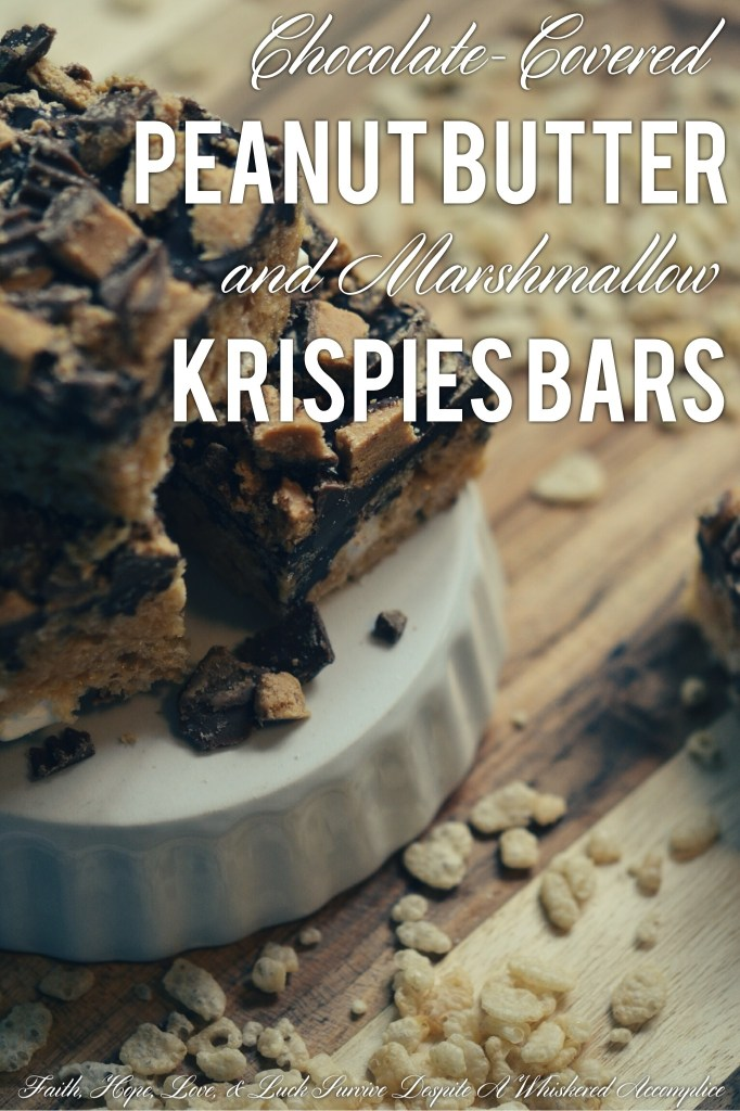 Chocolate-Covered Peanut Butter and Marshmallow Krispies Bars | Faith, Hope, Love, and Luck Survive Despite a Whiskered Accomplice