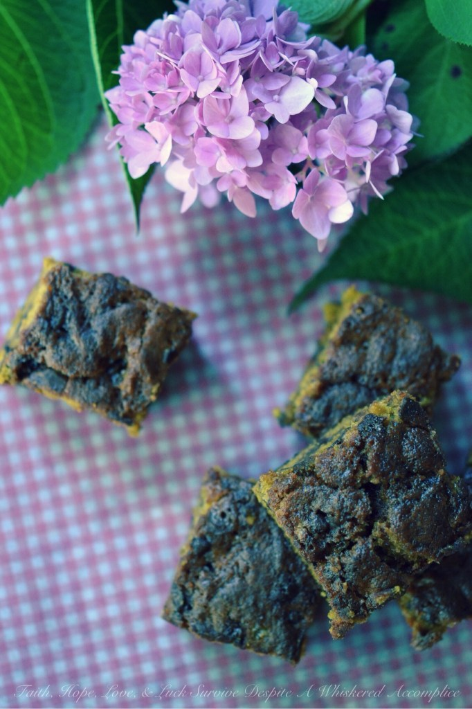Pumpkin Caramel Toffee Bars | Faith, Hope, Love, & Luck Survive Despite A Whiskered Accomplice