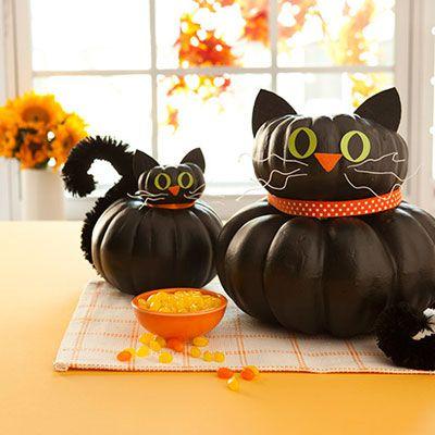Kitten Pumpkin   Faith, Hope, Love, and Luck Survive Despite a Whiskered Accomplice