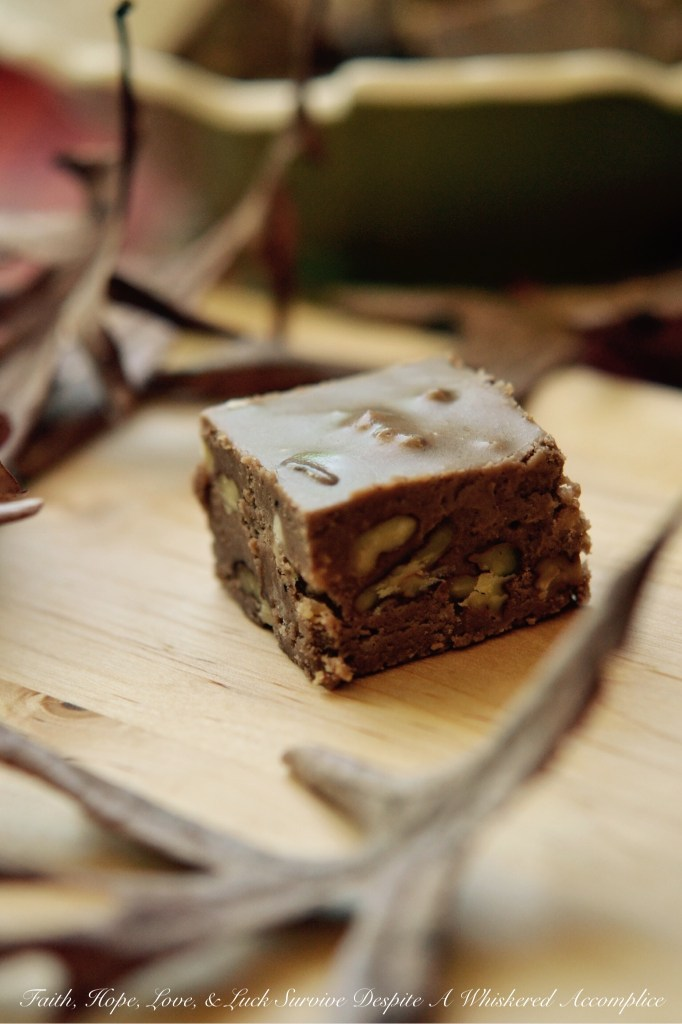 Pumpkin Spice Praline Pecan Fudge | Faith, Hope, Love, and Luck Survive Despite a Whiskered Accomplice