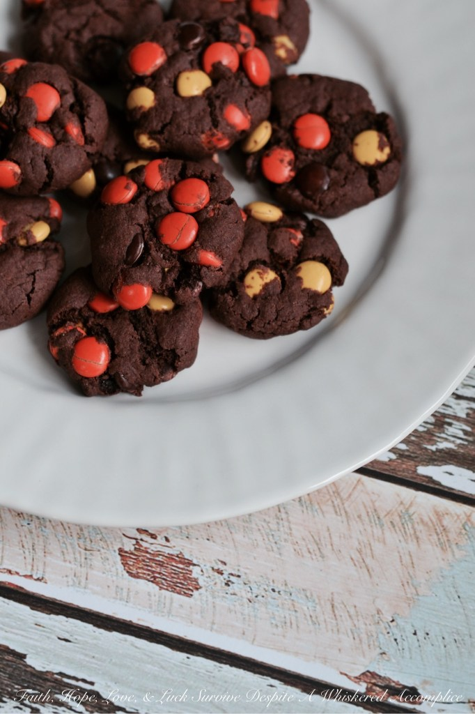 Chocolate Pudding Reese's Pancake Cookies | Faith, Hope, Love, and Luck Survive Despite a Whiskered Accomplice