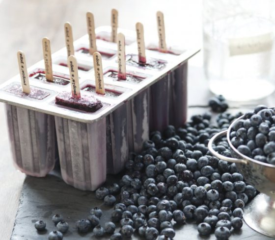 Blueberry Moonshine Popsicles | Faith, Hope, Love, and Luck Surive Despite a Whiskered Accomplice