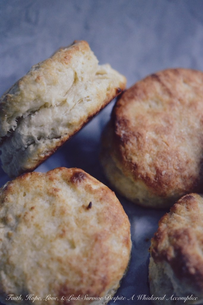Easy, Flaky Breakfast Biscuits - Take 2 | Faith, Hope, Love, and Luck Survive Despite a Whiskered Accomplice