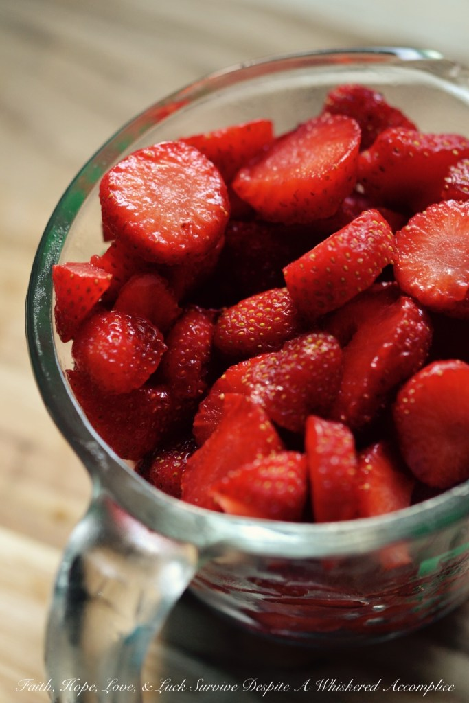 Small-Batch Strawberry Refrigerator Preserves | Faith, Hope, Love, and Luck Survive Despite a Whiskered Accomplice