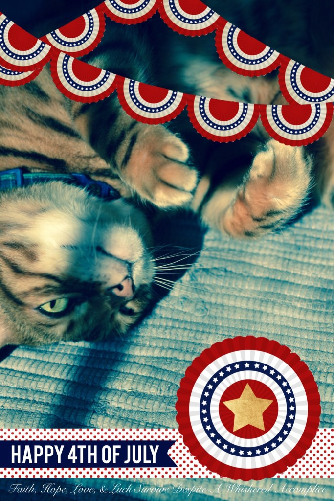 Happy Caturday! - 07/04/2015 | Faith, Hope, Love, and Luck Survive Despite a Whiskered Accomplice
