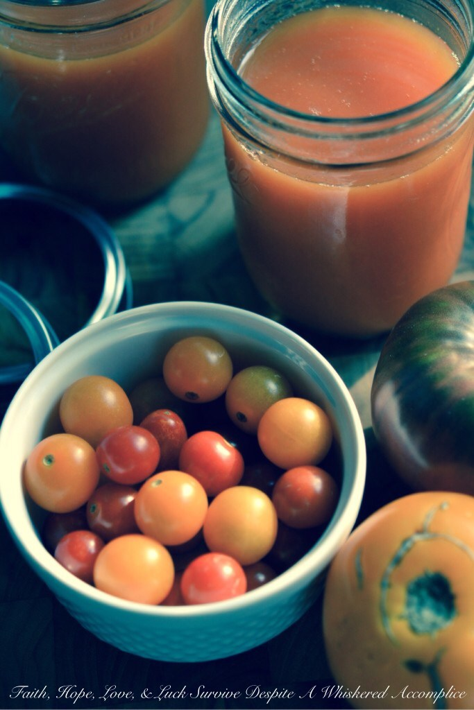 Garden Fresh Tomato Juice | Faith, Hope, Love, and Luck Survive Despite a Whiskered Accomplice