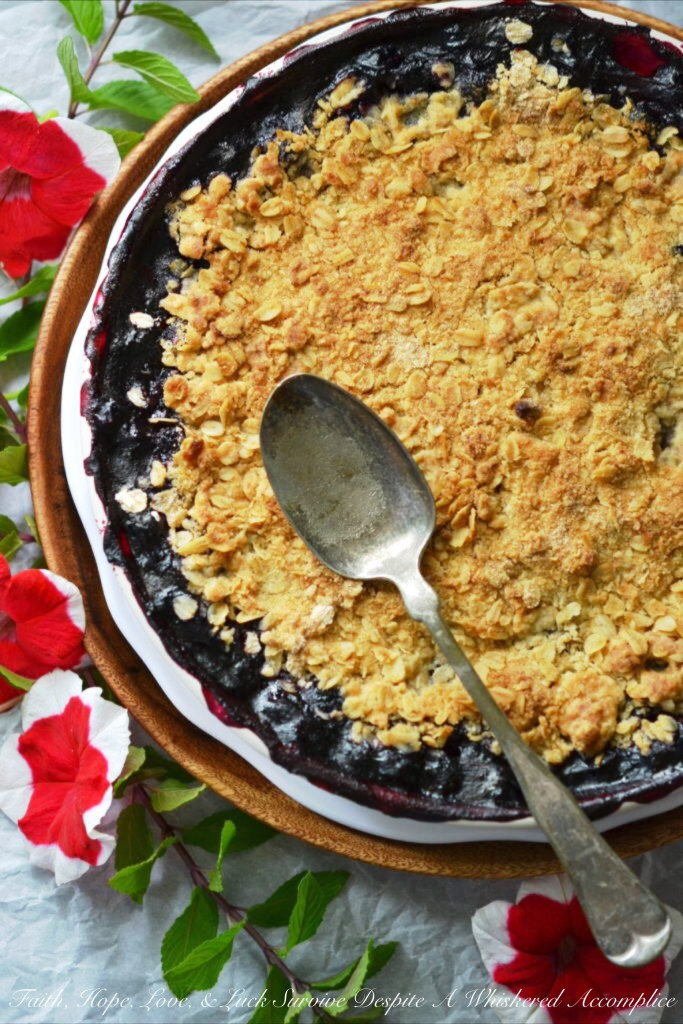 Summer Blueberry Pie Crisp | Faith, Hope, Love, & Luck Survive Despite a Whiskered Accomplice