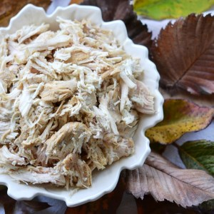 Instagram - Autumn Crockpot Poached Chicken Breasts | Faith, Hope, Love, and Luck Survive Despite a Whiskered Accomplice