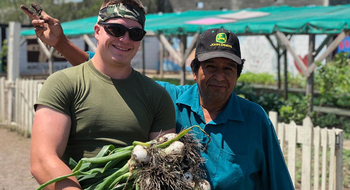 Harvesting fresh onions from the garden in Naranjito