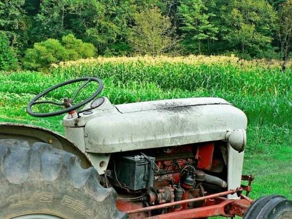mid summer tractor 2011
