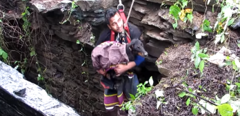 dog rescued from well sobs