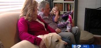 service dog warns diabetic daughters sugar drops