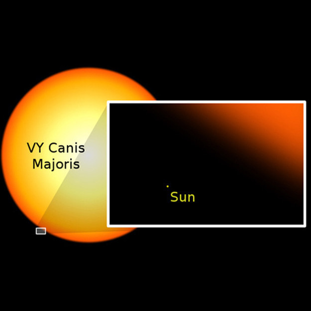 Which means that there are ones much, much bigger than little wimpy sun. Just look at how tiny and insignificant our sun is:
