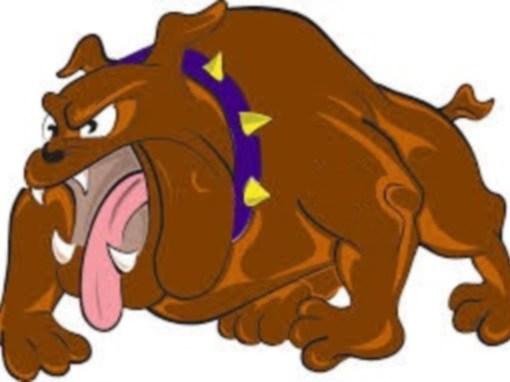 Rabid Angry Dog