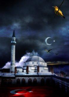 Mosque (2)