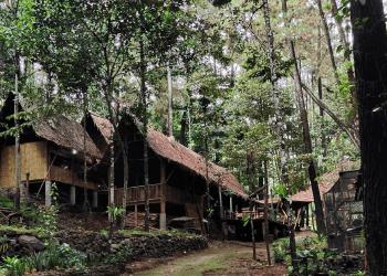 Peneliti ITB Nilai Kondisi Alam Cisamaya Tepat untuk Healing Forest
