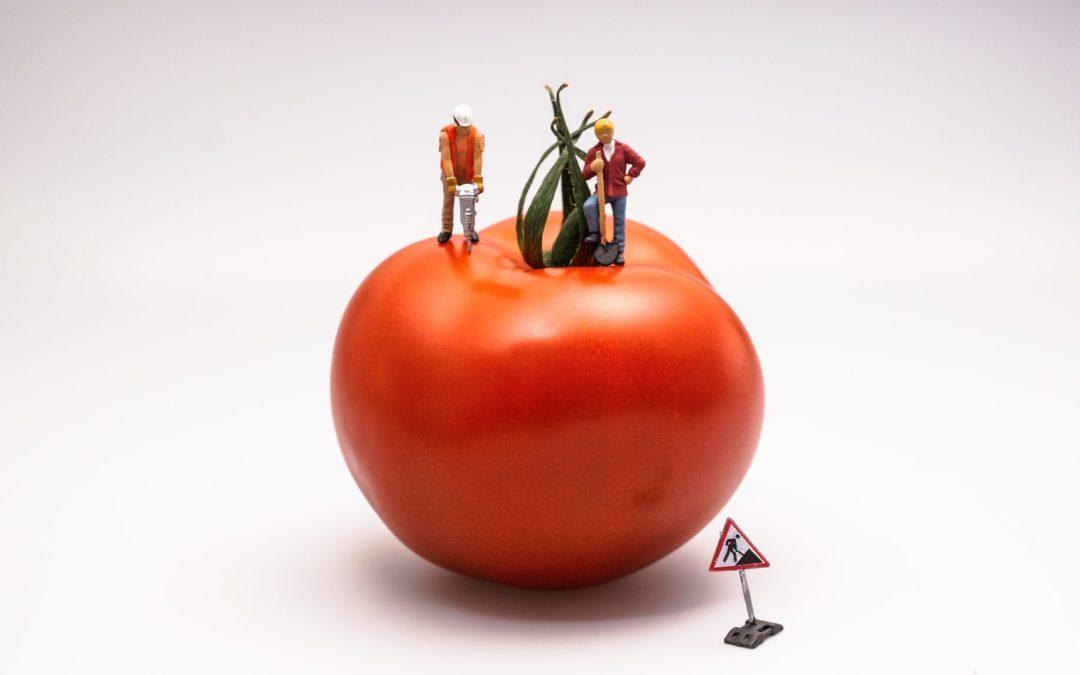 Zagramy w pomidora? Technika Pomodoro Twoim kluczem do sukcesu w pracy
