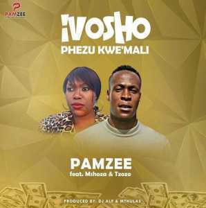 DOWNLOAD mp3: Pamzee Ivosho Phezu Kwemali feat. Mshoza & Tzozo mp3 download