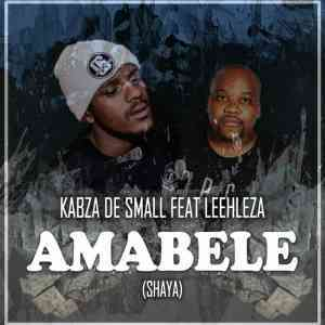 DOWNLOAD Video: Kabza De Small Amabele Shaya Remix Video ft. Leehleza mp4 & mp3 download