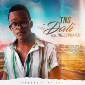DOWNLOAD mp3: TNS My Dali feat. Indlovukazi mp3 download