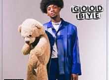 Download mp3: Benny Afroe Good Bye mp3 download fakaza 2018 2019 com music gqom amapiano afrohouse