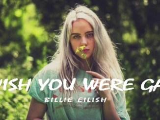 Billie Eilish - Wish You Were Gay Lyrics Fakaza Download