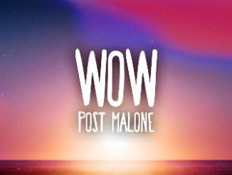 Post Malone – Wow Lyrics Fakaza