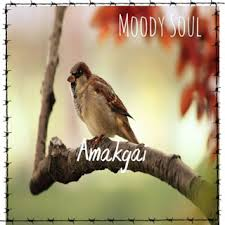 Moody Soul – Amakgai (Amapiano Edit) Mp3 Download