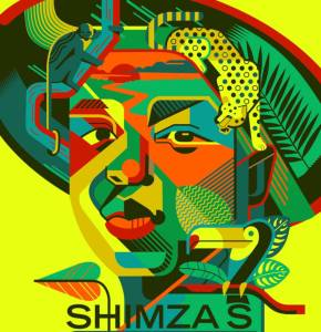 Shimza – Fire OMS Bootleg Mp3 Download