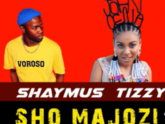Shaymus Tizzy – Sho Majozi Mp3 Download