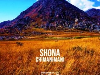 Shona SA – Chimanimani (Original Mix) Mp3 Download Fakaza