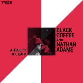 Download Mp3 Black Coffee & Nathan Adams – Afraid of the Dark Ft. Sean Ali & Munk Julious(Midnight Mix)