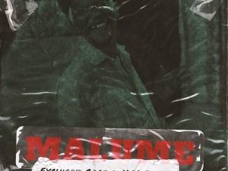 Download Mp3 Exclusive Sage – Malume Ft. N McBunda [Radio Edit]