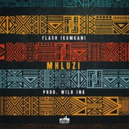 Download Mp3 Flash Ikumkani – Mhluzi