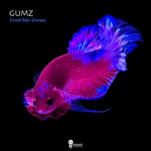 Download EP Zip Gumz – Fool Me Twice