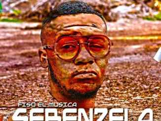 Download EP: Fiso El Musica – Sebenzela