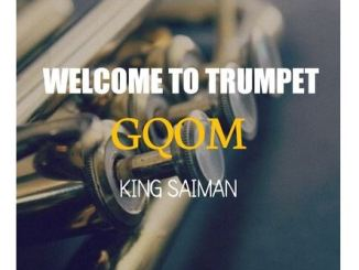 King Saiman & Deejay Zebra SA MusiQ – Survival (Original Mix)