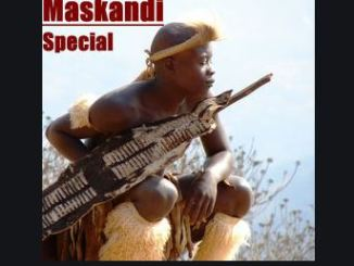 Various Artists – Maskandi Special