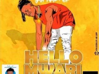 Jah Master - Hello Mwari (Amapiano Version) Mp3 Download