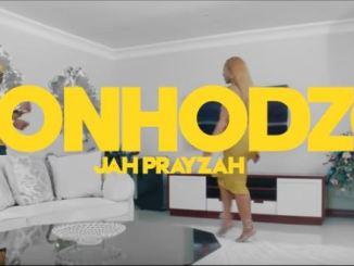 Jah Prayzah - Donhodzo