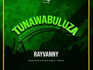 Rayvanny - Tunawabuluza Mp3 Download