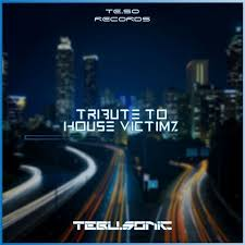 Tebu.Sonic – Tribute to House Victimz