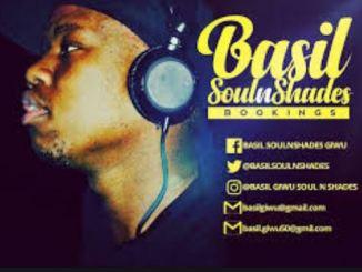 Basil SoulnShades - From Alex To Tembisa Ft. De JazzmiQdeep, Mtypa, Phami and Tebza The Guitarist