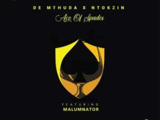 VIDEO: De Mthuda & Ntokzin – Dakwa Yini Ft. MalumNator
