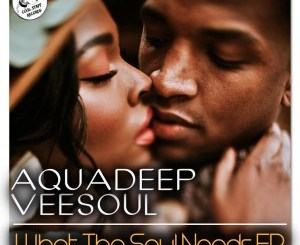 Veesoul, Aquadeep – Whatever You Like Ft. Craig