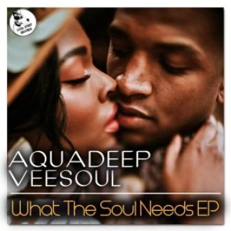 Veesoul, Aquadeep – Whatever You Like Ft. Craig