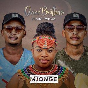 EP: Dvine Brothers & Miss Twaggy – Mjonge