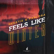 Neestie & PabloSA – Feels Like Winter (Afro Mix)